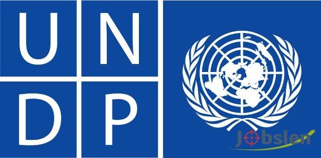 وظائف في منظمة الأمم المتحدة UNDP بخبرات محدودة