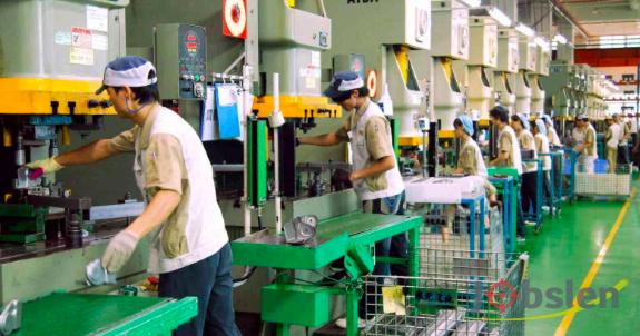 مصنع أجبان يطلب عمال براتب ثابت وميزات مجزية