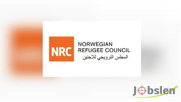 المجلس النرويجي للاجئين يوفر فرص عمل
