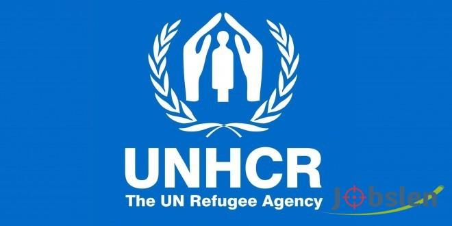فرص تدريب مميزة في المفوضية السامية لشؤون اللاجئين مدفوعة الأجر